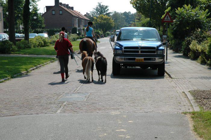 geleiders-paarden-e1556994093492 Categorie A Algemene bepalingen verkeerswetgeving