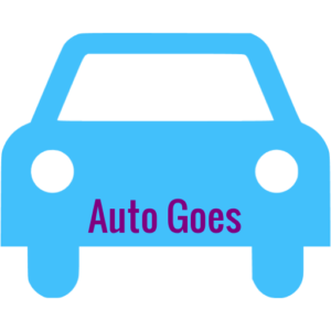auto theorie cursus goes