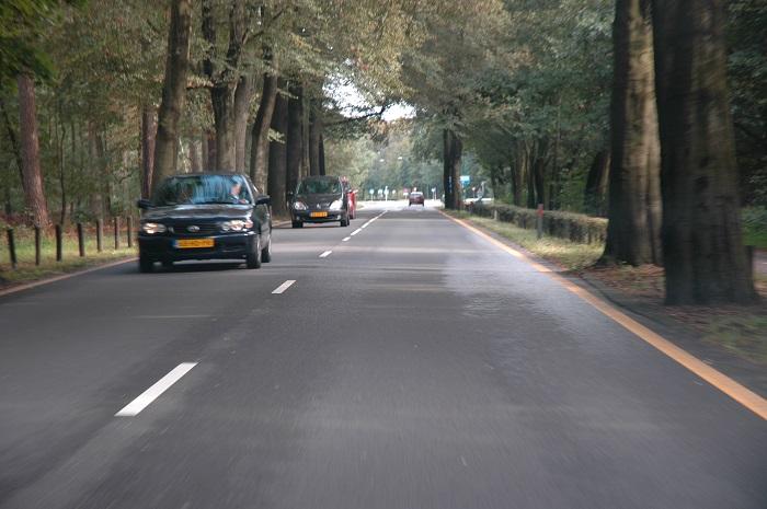 stilstaan-verboden Categorie Z Verkeerstekens op het wegdek